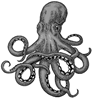 Octopus PNG clipart images free download | PNGGuru