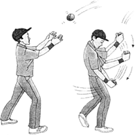 Image result for Second Law of Motion Catching a cricket ball